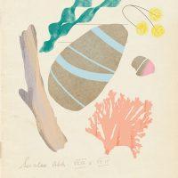 Embleton-beach-finds-A3-web